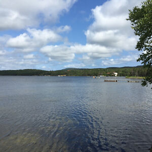 1 Acre Waterfront Cleared Building Lot in Bellevue! St. John's Newfoundland image 4