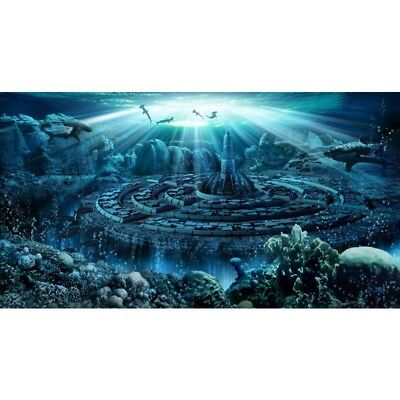"H2Show Atlantis Background & Application Gel, 31.5"" x 15.75"" for Aquarium Tank"