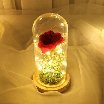 Enchanted Forever Rose Flower In Glass Dome LED Light Decor Valentine's Day Gift