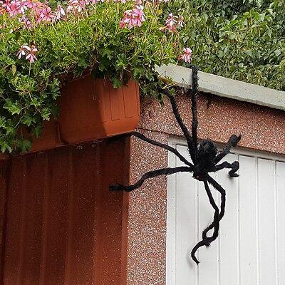 XXL Riesen Spinne Tarantula 70 cm Plüsch schwarz  Halloween Horror Deko