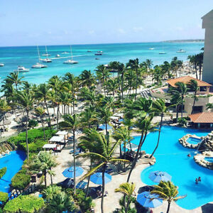 Barcelo Aruba (Occidental Grand Aruba)