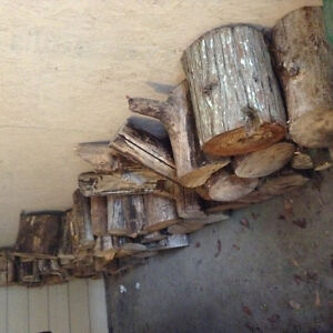 Fire wood,mostly maple