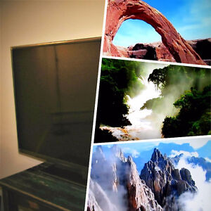 40 inch 1080p LED TV; Mint Condition!