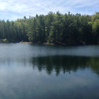 Waterfront property 4 acres / Bord de l'eau 4 acres