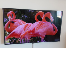 Sony BRAVIA 55'' HDTV