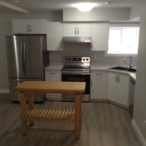 Executive Suite For Rent - One Bedroom - Feb 1 Available