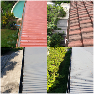 Gutter Cleaning from $99.00
