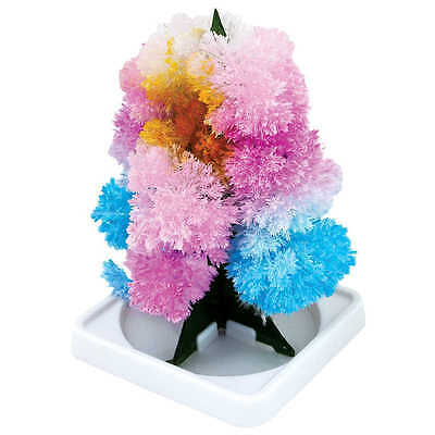 Magic Tree Crystal Garden Chemistry Science Kit Set