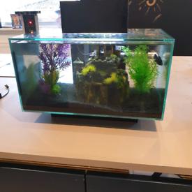 Fluval edge 23l Aquarium