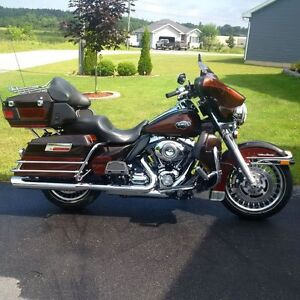 Mint Harley for sale