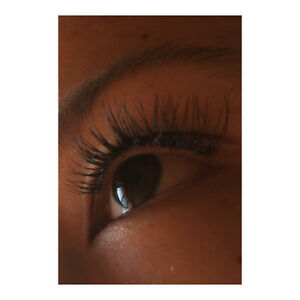 how to become a certified lash stylist