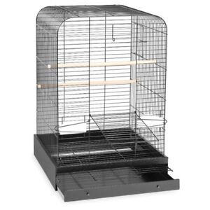 Looking For These Prevue Hendryx Bird Cages