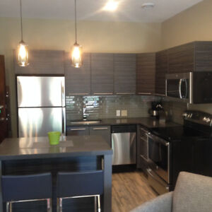 Fall/Winter AptRentals 1BR! - $1500+/monthly - all utiliities