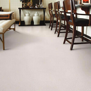 ** GREAT WHITE CARPET **** GREAT DEAL****$ 2.49