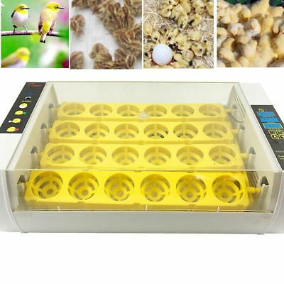 24-Eggs Egg Incubator Intelligent Digital Temperature Hatcher Small Brooder US