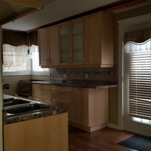 Spacious newly renovated Vegreville