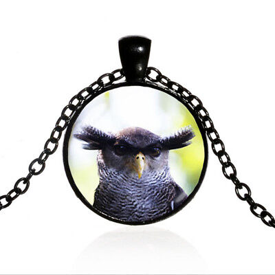 Eagle Owl Black Dome glass Photo Art Chain Pendant Necklace for sale  Shipping to Canada