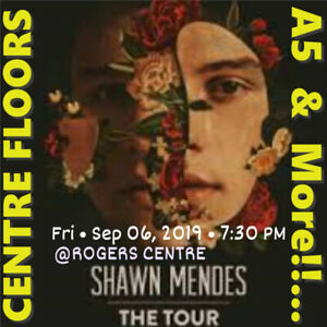 SHAWN MENDES @ ROGERS CENTRE - AMAZING CENTRE FLOORS A5 & MORE