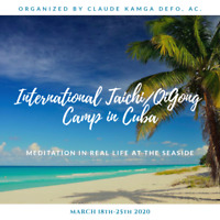 Stage International Taichi QiGong/ Taichi Camp