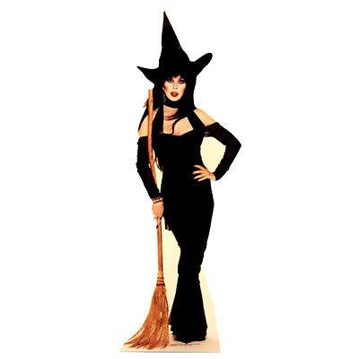 ELVIRA Witch Broom Mistress of the Dark CARDBOARD CUTOUT Standup Standee Poster