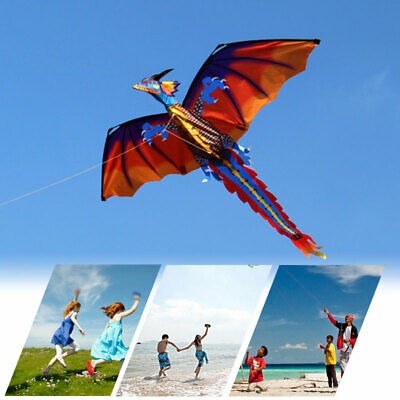 Huge 3D Dragon Kite Single Line With Tail Family Outdoor Spo