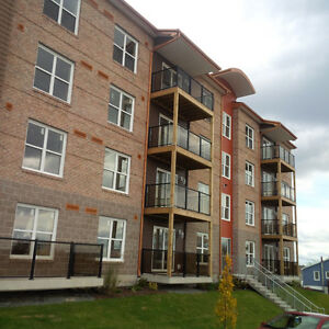 NEW! 2 Bedrm Suites - Sept- Near Burnside -Heat/Hw/Pking Incl