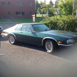 1984 Jaguar XJS de collection