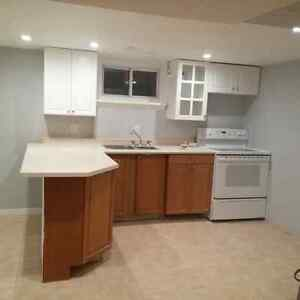ONE BEDROOM, NEWLY RENOVATED SPACIOUS BASEMENT APARTMENT