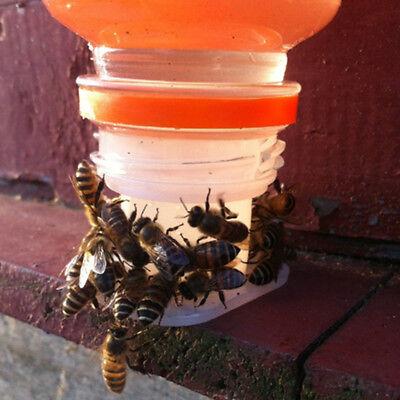 3 Pcs Bee Feeder Drinking Fountain Equipment Plastic Beekeeping Tools