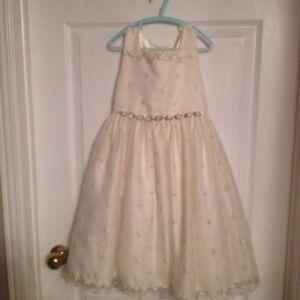 Dress size 6X