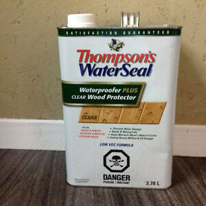 Thompson's WaterSeal Stain
