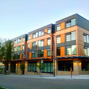 Modern 1 Bedroom Apartment on Victoria Drive - August 1st