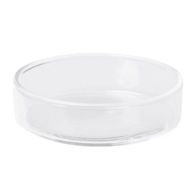 Clear Glass Shrimp Food Round Dishes Small Fish Feeding Bowl Ornamental Supplies