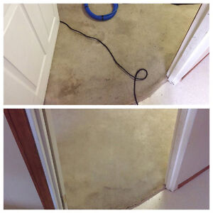 steam carpet cleaning starting from $60 Edmonton Edmonton Area image 4
