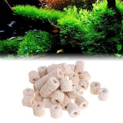 Biological Ceramic Filter Rings (Aquarium Ceramic Rings Biological Fish Tank Pond Filter Bacteria Media Canister)