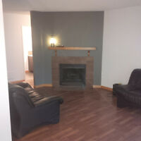 2 BED 2 BATH 2 STALLS CONDO NEAR KINGSWAY MALL AVAILABLE ASAP