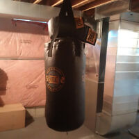 Everlast Punching Bag c/w gloves