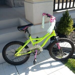 "18"" Girls Bike Toys R Us"
