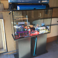 48Gal Aquarium System w/EHEIM Classic External Filter