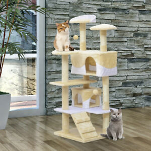 If You Have a Cat or Kitten Please Invest on a Cat-Tree