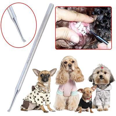 Tartar Remover Tools Double Head For Dogs And Cats Veterinary Use Pets Supplies