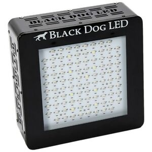 Blackdog BD240-U Top Rated LED grow light!!