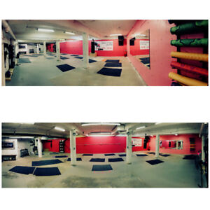 Commercial space in basement of Dirk Fitness (Main st)