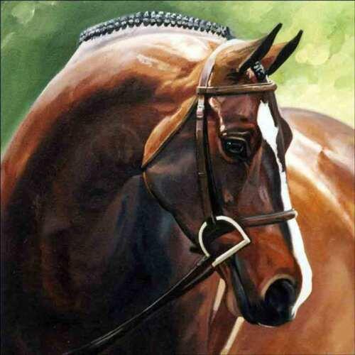 Horse Accent & Decor Tile Janet Crawford Equine Art JCA002AT