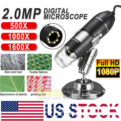 1000x1600x 8 Led Usb Zoom Digital Microscope Hand Held Biological Endoscope Us
