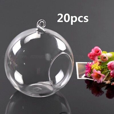 20pcs Clear Flower Hanging Vase Ball Plant Container Glass Home Wedding Decor