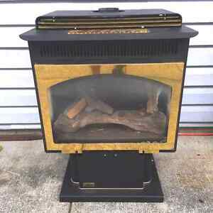 Napoleon Freestanding Natural Gas Fireplace