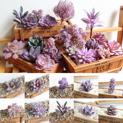 Home Decoration - Artificial Succulent Faux Cactus Plastic Purple Plant Home Garden Decoration 1PC