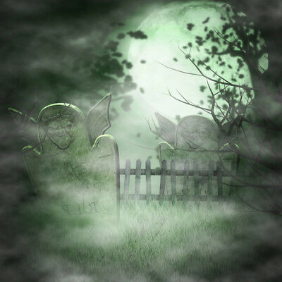 Fantasy Scary Graveyard Photo Backdrop 8x8ft Background Studio Props Photography (Graveyard Backdrop)