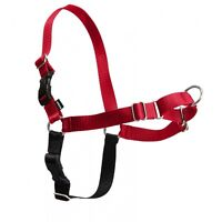 Easy Walk dog harness / harnais pour chien Easy Walk